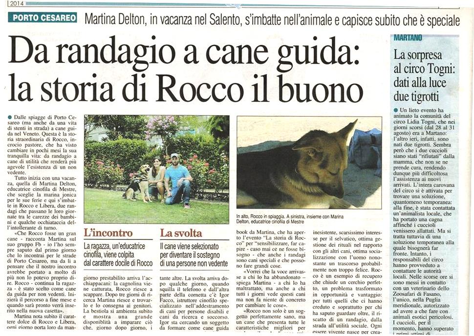 rocco_3a