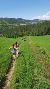 Wanderful walk